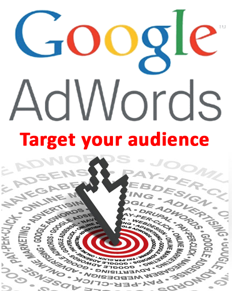 Google Adwords Audiencia